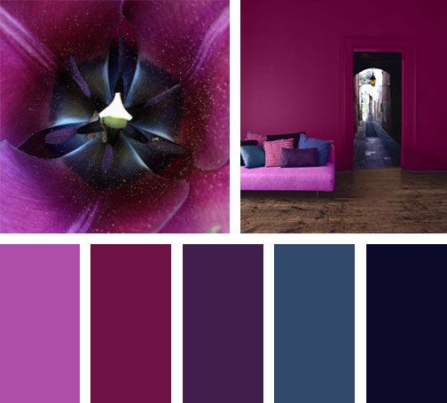 Reddish-blue - Al mezclar rojo y azul obtenemos un color púrpura exquisito. ¡Disfruta esta aromática paleta de colores!