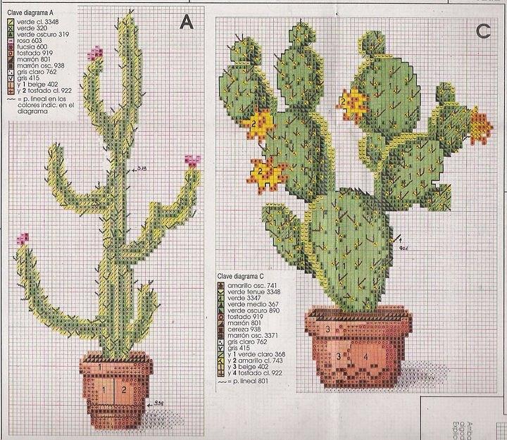#Cactus #2 Cacti #cross-stitch
