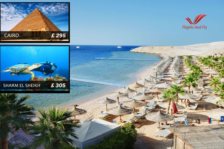 Visit the land of Pyramids and amazing beaches!  Egypt flight offers: Cairo £295 from London Gatwick Sharm El Sheikh £305 London Heathrow  Dial 0207 0960658 to book your flights now  http://flightsandfly.co.uk/cheap_flights_to_cairo.htm