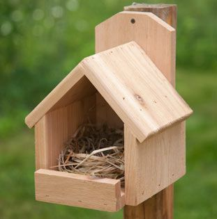 Cardinal nest box, though the sides could be tapered back for robins.