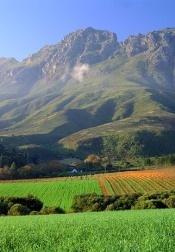 Stellenbosch South Africa