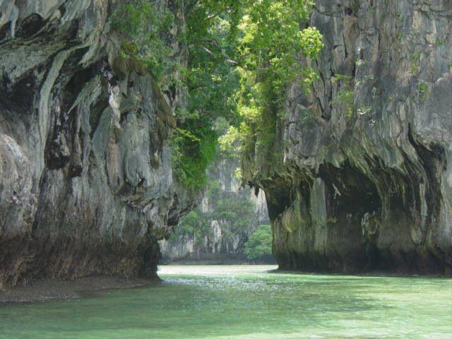 Parc National de Taï  - Soubré