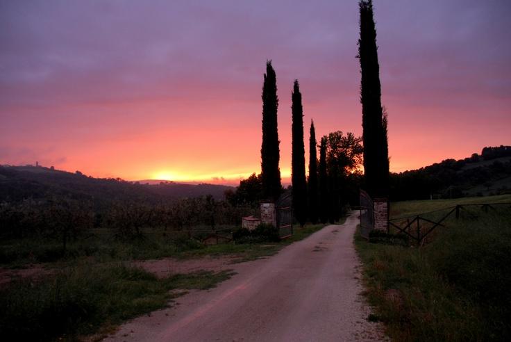 La Segreta Sunset