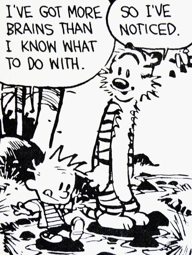 900 Best Calvin And Hobbes Images By Wintendo64 On Pinterest