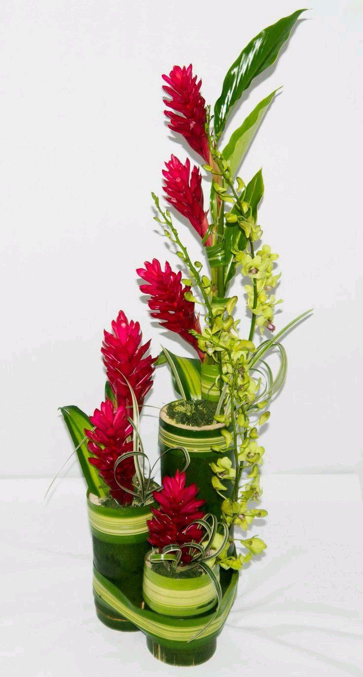 best Petals n Buds high design floristry images on Pinterest