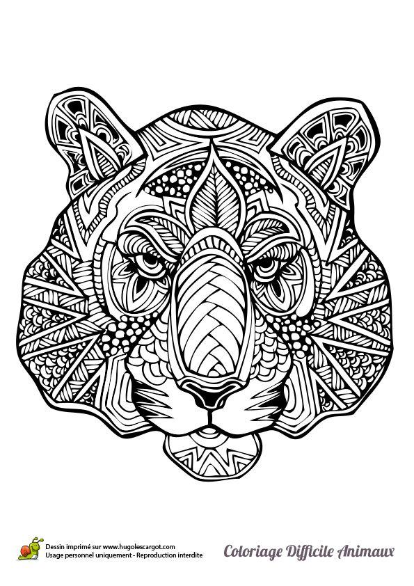 Dessin à colorier d'une tête de tigre - Hugolescargot.com