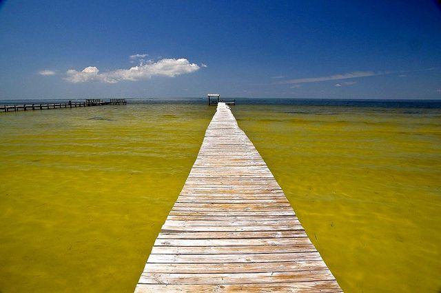Pine Island, Florida - USA