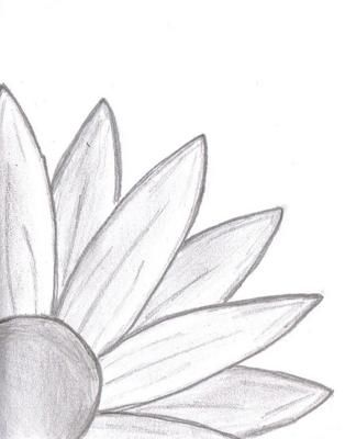 Doodle Daisy Drawing: I started drawing and ended up with this... a daisy peeking out at the new world, seemingly shy at first. I guess you would call it a daisy doodle.