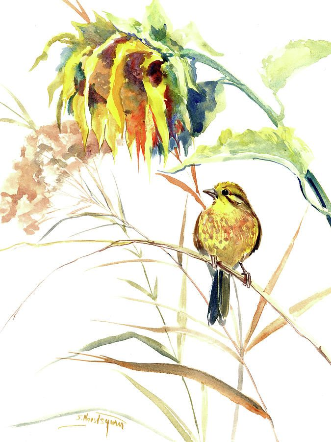 Yellow Bird And Flower Sunflower And Yellowhammer In 2020 Watercolor Images Watercolor Sunflower Art