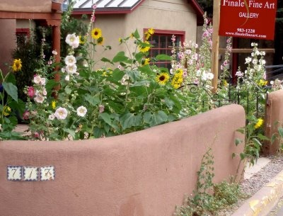 New Mexico garden must have: hollyhocks