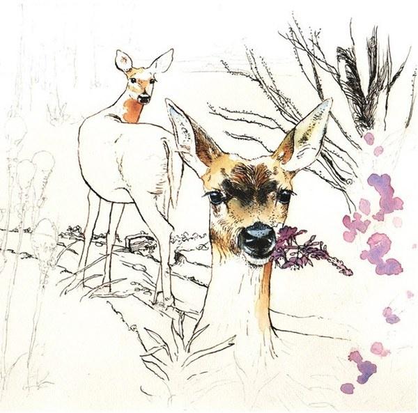 portrait, illustration, painting, acrylic, art, ink, drawing, deer,