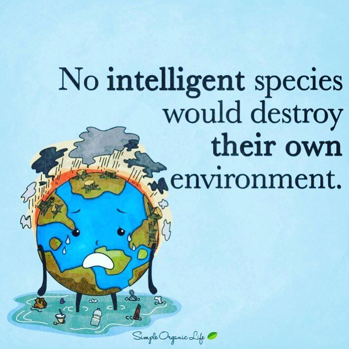 Ocean Conservation Quotes - Famous Sea ... - Sea and Sky