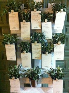 Seatting Wedding Floral Ideas Pinterest Wedding And