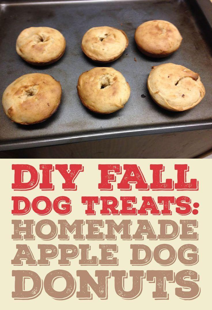 DIY FALL DOG TREATS: Homemade Apple Dog Donuts!