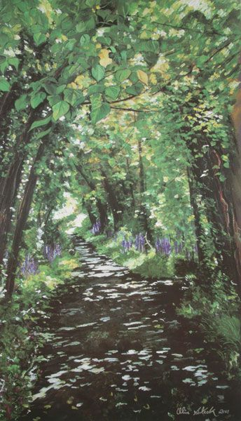 'Bluebell Woods' Limited Edition of 495