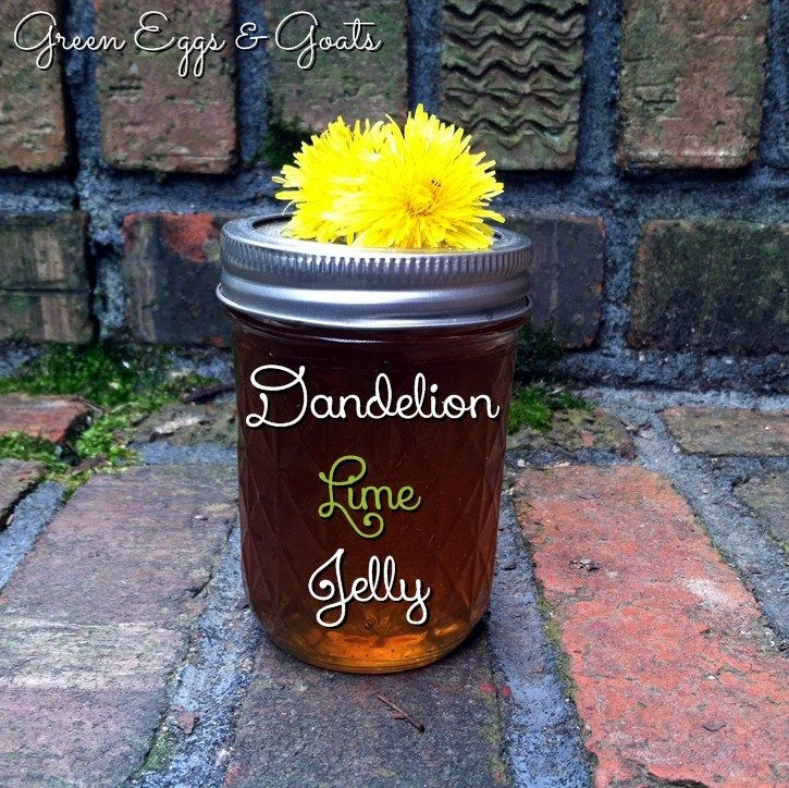 Dandelion Lime Jelly Recipe  - it tastes like a warm spring day, any day of the year!