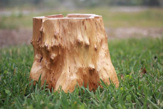 Natural Hollow Tree Stump Photo Prop Tree Stump Real Wood