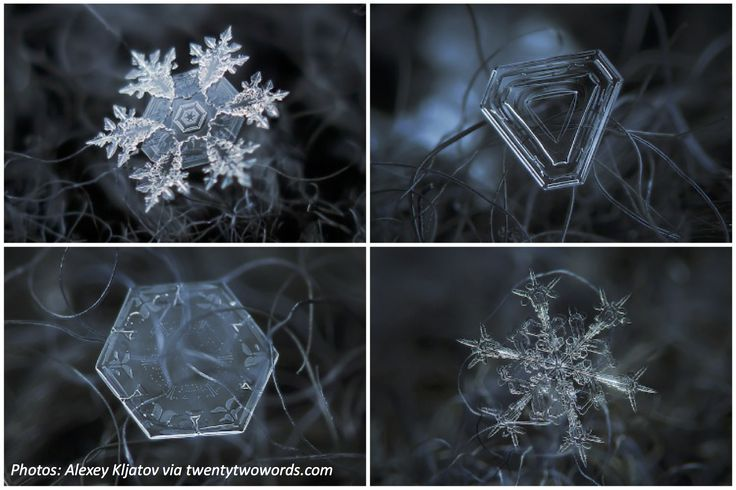 We'll never look at snow the same way again after seeing these incredible close-up photos. Learn how the photographer makes these masterpieces in this fun math problem!