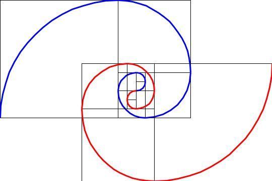 Fibonacci Spiral Math Artsy Pinterest Platonic Solid