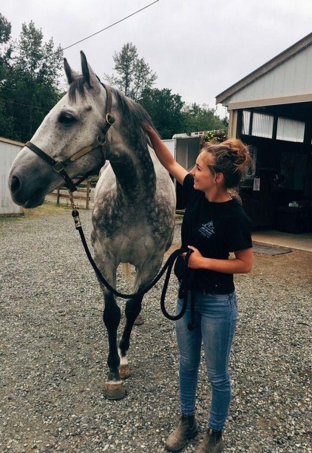 """Ecurie Egle Au CÅ""""ur De La Cite Du Cheval En 2020 Chevaux Mignons Photographie Equine Photographie Equestre"""