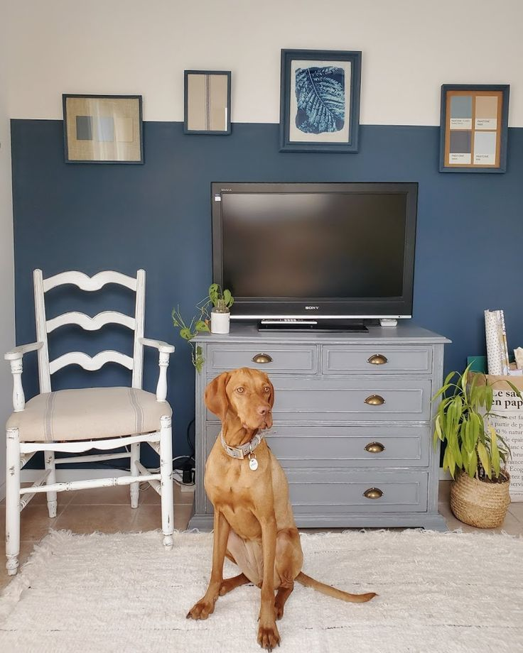 Proyecto azul: renovar un cuarto con color - halfpainted wall / Vero Palazzo - Home Deco House Rooms, Palazzo, Flat Screen, Ube, Construction, Color Of The Year, Shades Of Blue, Blue Nails, Colors