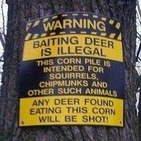 Funny deer corn sign!  Gotta love hunting humor !