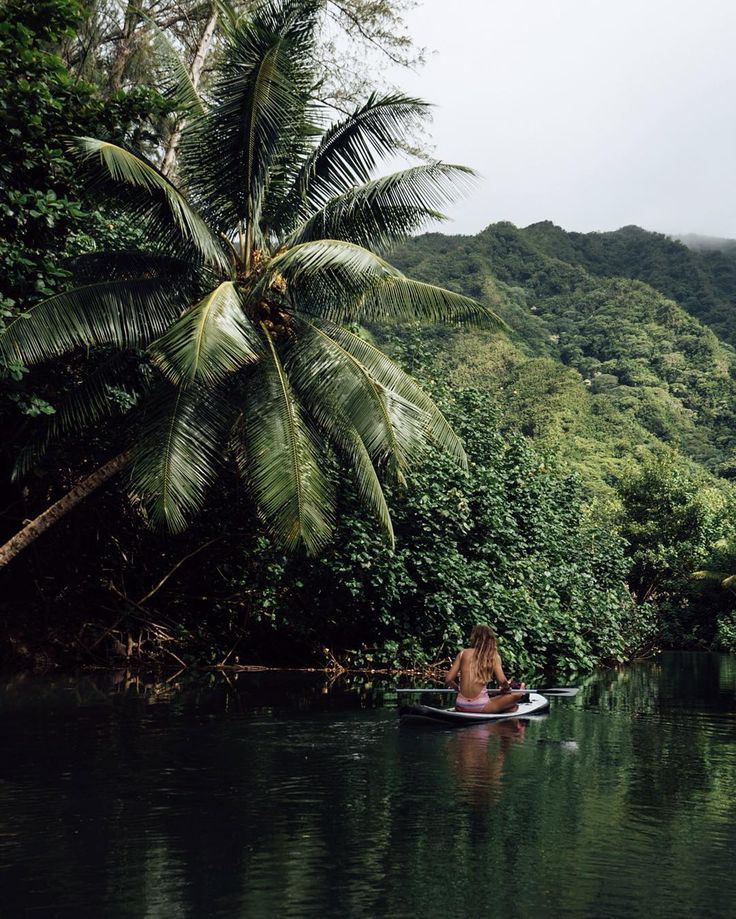 SUP // Palms \\ Adventure // Stand up paddle boarding