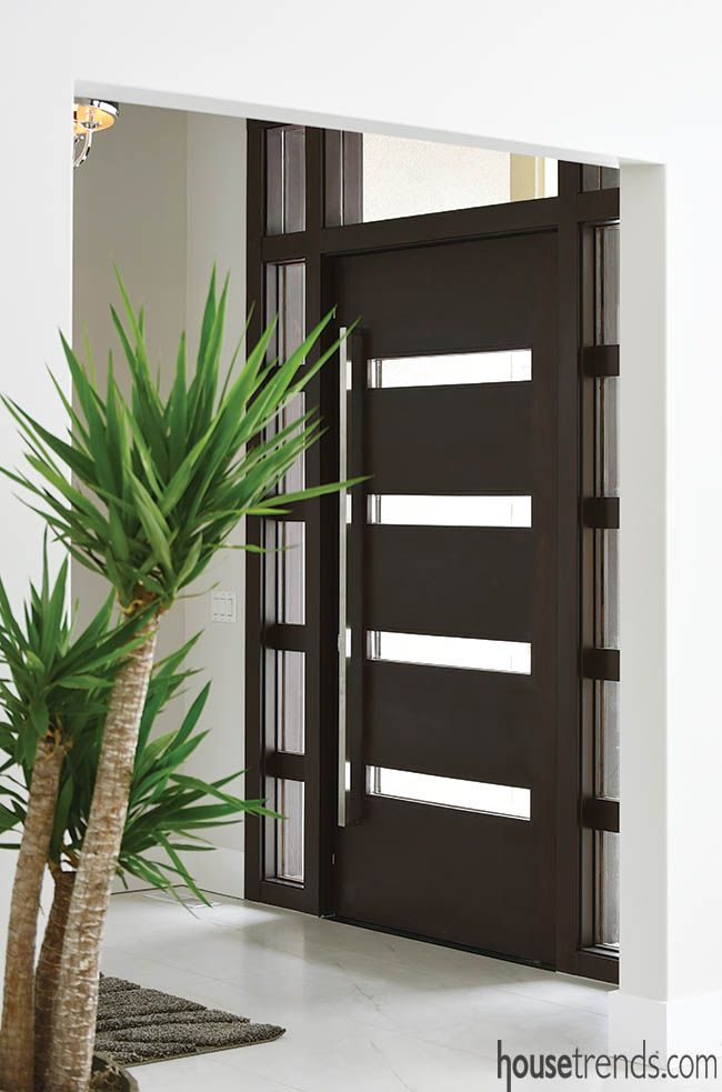 Pins replace hinges for this entry door : specialist doors - pezcame.com