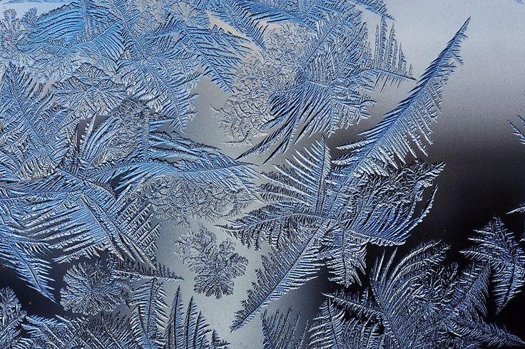 #fractalpatterns frostpatterns frost fractalfrost frostfractalpatterns beautifulfractalpatterns beautifulfrostpatterns frostcrystals