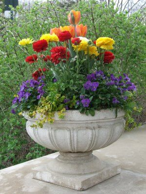 Dig It! Childrens Gardening Resource: Spring Containers with Kids