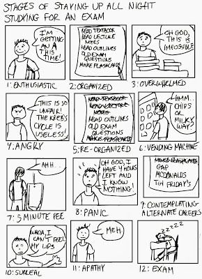 A Cartoon Guide to Becoming a Doctor: Stages of studying