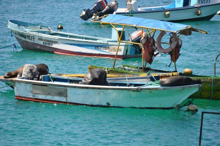 Ecuador, Galapagos, Peru & Bolivia. Adventuredk. Travling. Travel. Nature. Culture. Boat. Water
