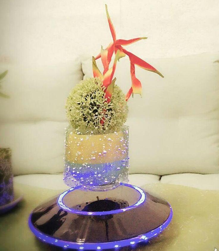 New technology air bonsai.