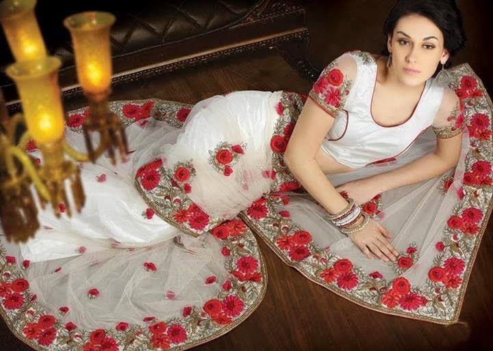 Saree Collection 2014   Indian Saree 2014 for Brides   Designer Bridal Saree 2014 ~ Zem Tv Photo Shoots