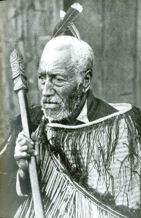 Old Maori Women: Old Maori Chief, With Face Tattoos