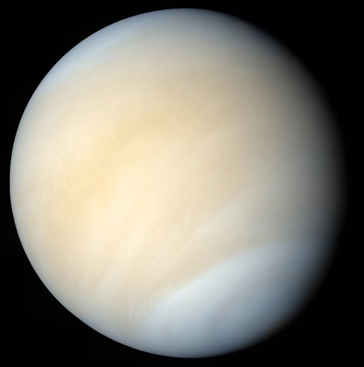 Venus in real colors, processed from Mariner 10 images. Image credit: Mattias Malmer / NASA.