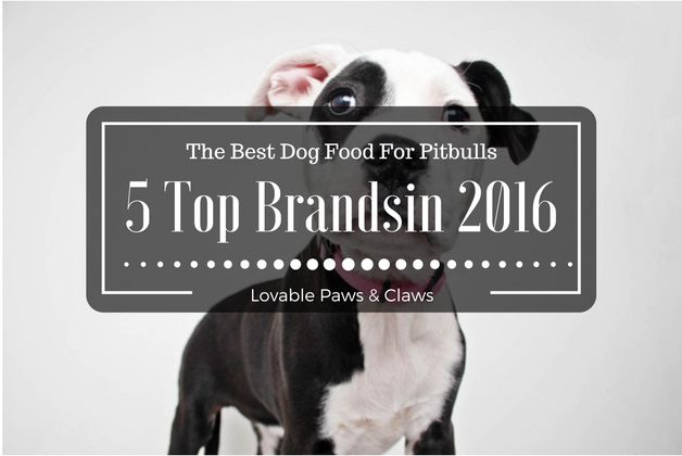 The Best Dog Food For Pitbulls: 5 Top Brandsin 2016