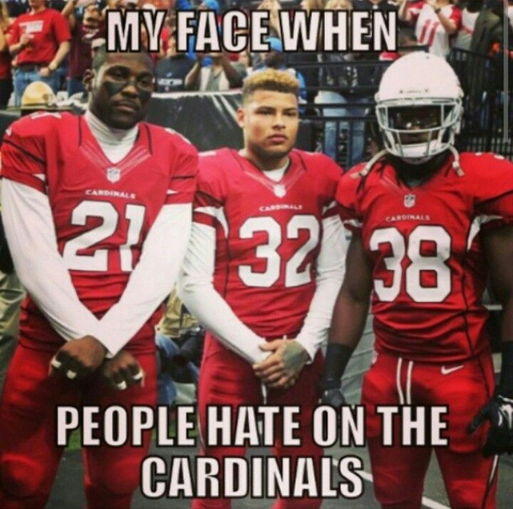 Arizona Cardinals NFL football. Arizona LadyBirds. NFLfemale.com 2014