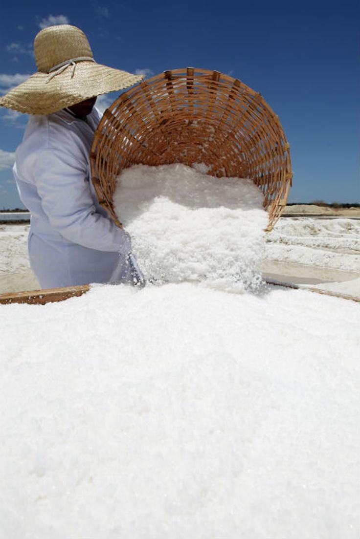 Sea Salt Production in the State of Rio Grande do Norte. Brasil