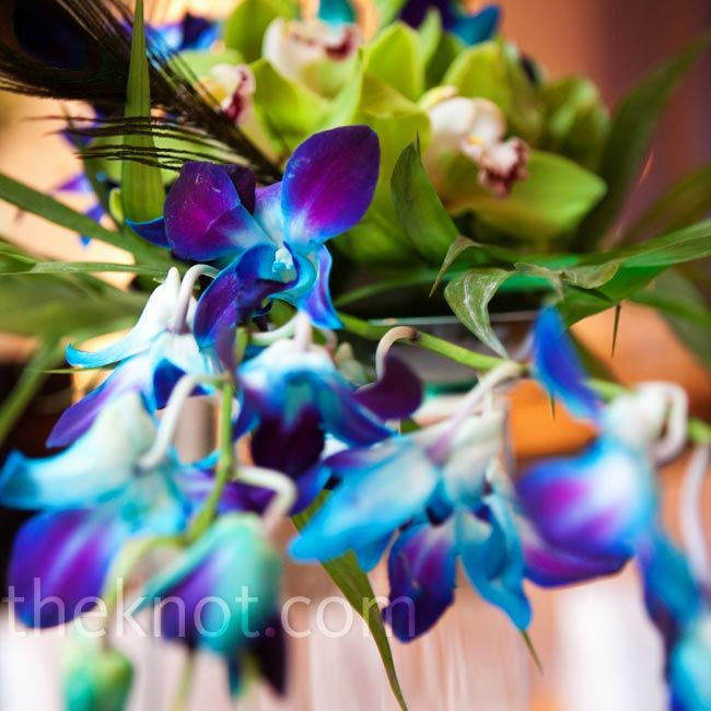 Blue and Green Orchid Centerpieces