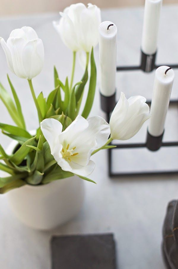 www.thewhitebox.no. Scandinavian interior design. Kubus by Lassen, white tulips, marble table.