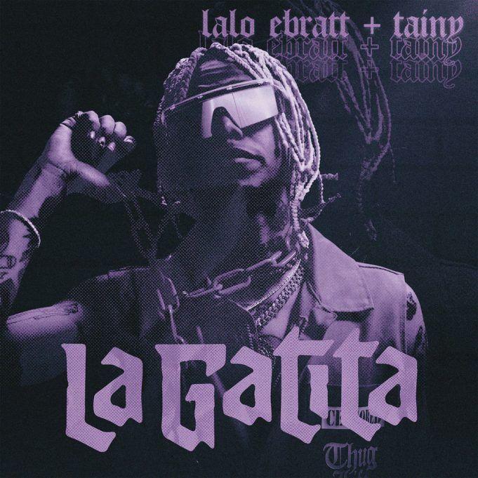 Letra De Gatita Lalo Ebratt Tainy Letrasboom Com Gatos Música Latina Latinas