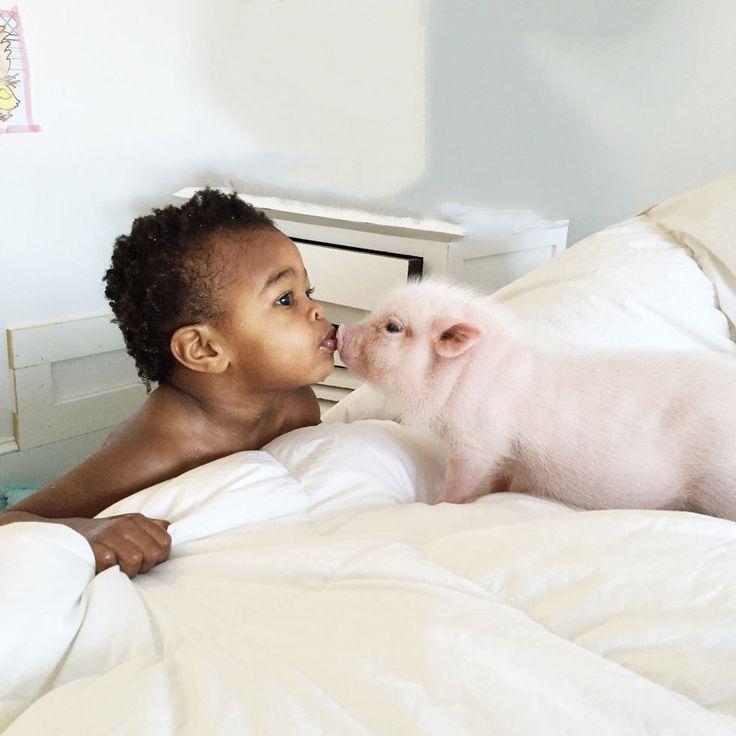 Das Minischwein Pearl wächst in der Familie der zweijährigen Libby auf. Mädchen und Schwein sind schon jetzt unzertrennlich.