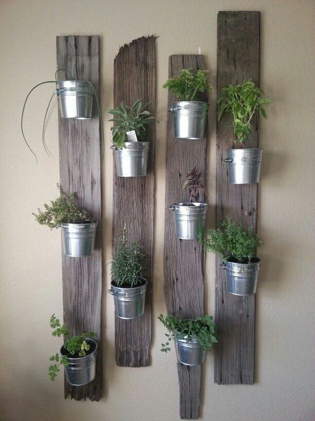 Mini jardinières et pots d'intérieur aux herbes aromatiques