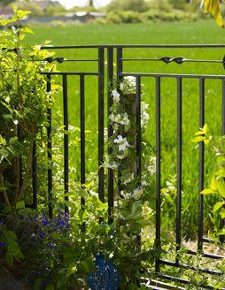 Freshen up railings Σφυρήλατο χρώμα hammerite