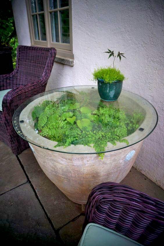 Garden/houseplant decor