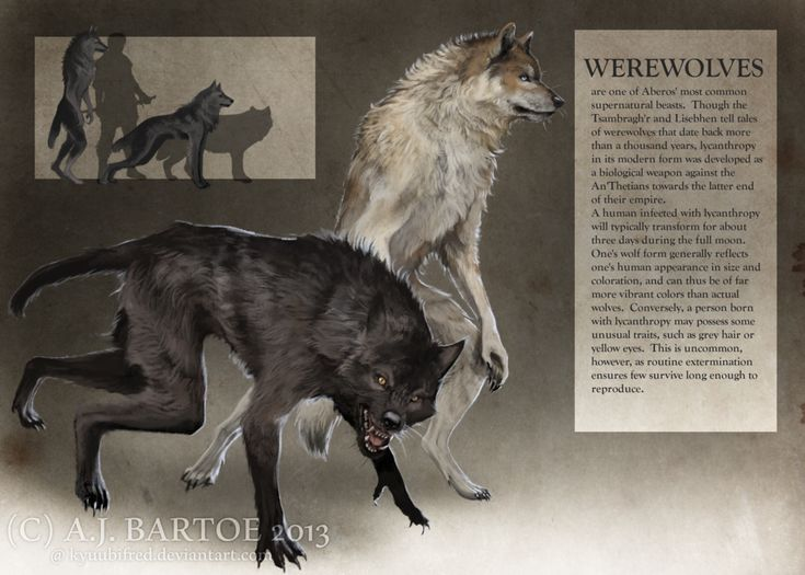 Werewolf Legends from Around the World