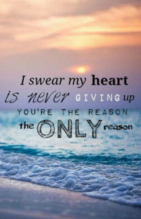 5sos- the only reason ( my favorite song )