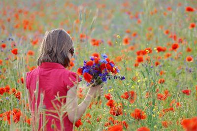 <p> Guten Morgen liebe Linde, dieses Sträußchen ist nur für dich! Haben wir am Sonntag gepflückt in der nähe von Müritz, da gibt es einige schöne Mohnfelder. Und ich konnte nicht vorbei ohne ein Sträußchen mit zunehmen. Schade dass du so weit wohnst, sonst würde ich noch vorbei kommen. Ganz viele liebe Grüße!!!</p>