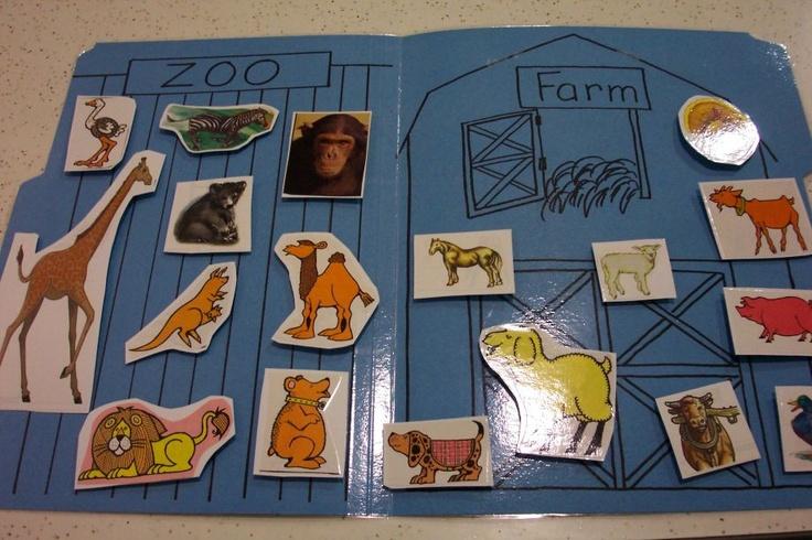 animales de la granja y animales salvajes